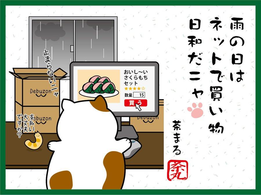 雨の日は ネットで買い物 日和だニャ
