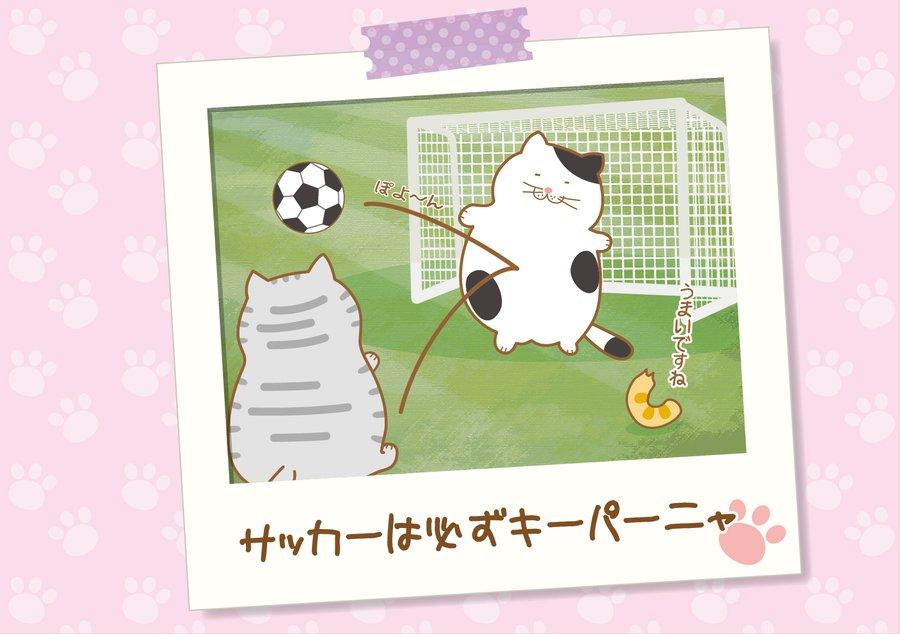 サッカーは必ずキーパーニャ【でぶねこあるある】
